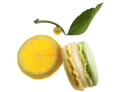 Le macaron du mois de Pierre Marcolini