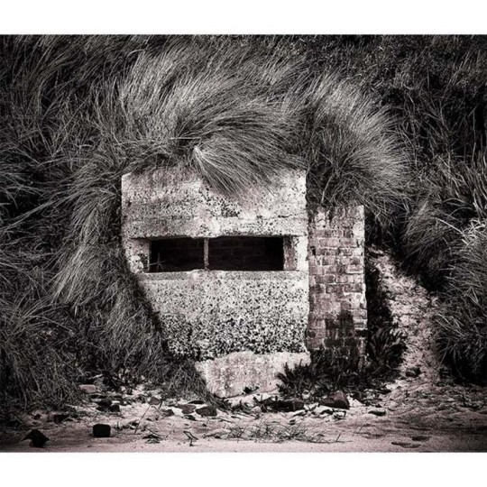 Derek Snee - photographe britannique (Copier).jpg