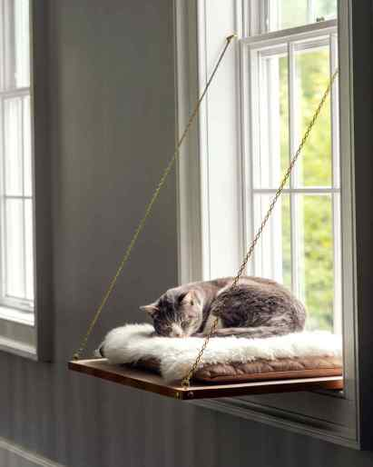 cat windows perch design.jpg